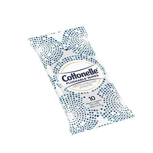 Cottonelle FreshCare Flushable Wipes for Adults, Alcohol Free, 24 Packs of 10 Wet Wipes